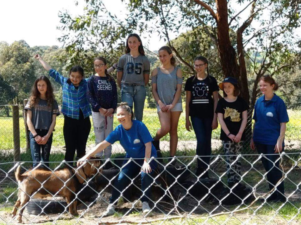 school-groups
